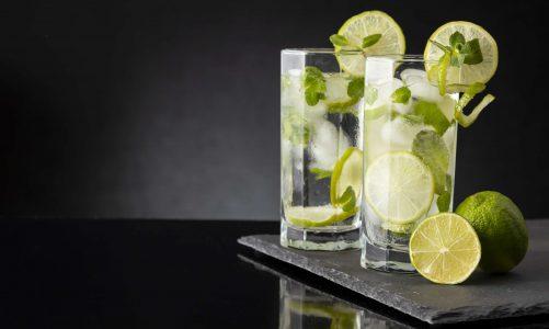 Een feestje geven met alcoholvrije gin